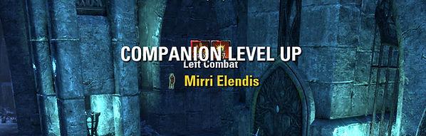 Companion Level Up.jpg
