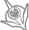 nightblade-icon-eso2.png