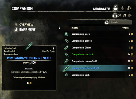 Companion - New Companion Gear - 2.jpg