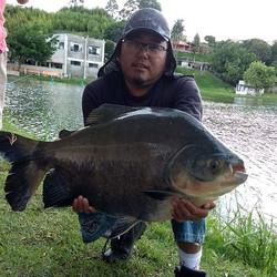 Pescador_ Ricardo Kanashiro_Isca_ Anteni