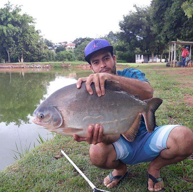 Pescador_ Bruno_Iscas__Pacú - fígado _Ma