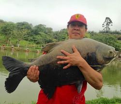 Pescador_ Reinaldo _Isca_ queijo branco