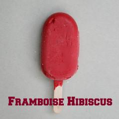 Framboise Hibiscus Fabrice.jpg