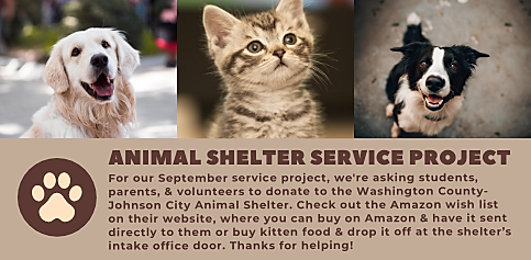 Youth Animal Shelter Service Project for