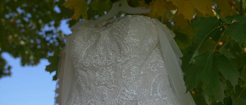 The beautiful wedding dress hanged on a tree