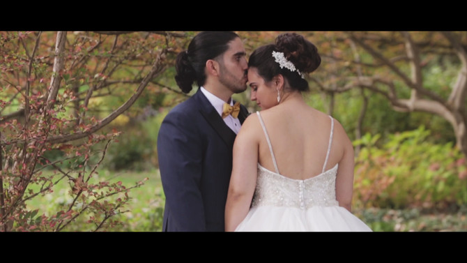 Anna & Peter, a wedding filmed at the Fontana Primavera.