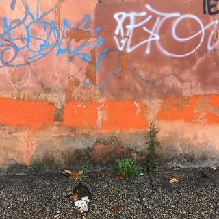 Roma!#roma #contemporaryart #visititaly.