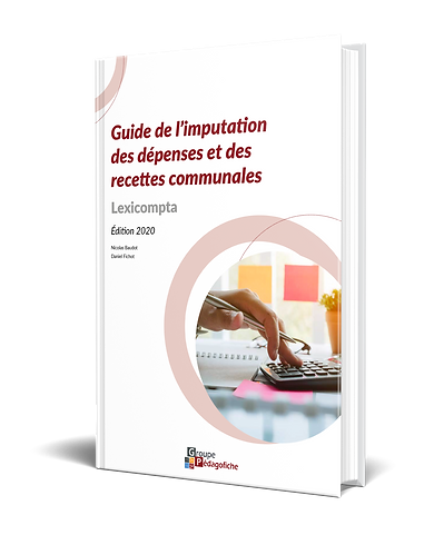 VIGNETTE-GUIDE-IMPUTATION-2O2O.png