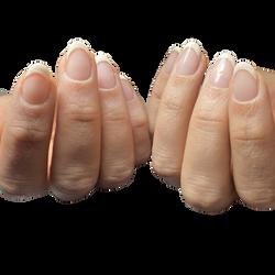 natural nails / hand painted