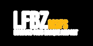 LFBZ_MSFS.png
