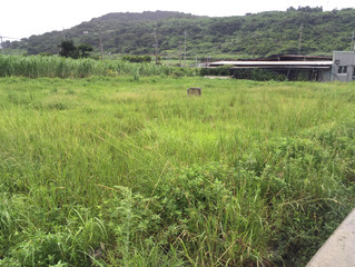 沖縄県八重瀬町世名城 草刈り工事