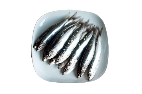 Toppers | Pre-frozen Sardines