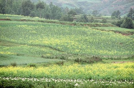 Shanxi Province countryside.jpg