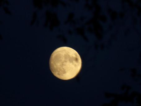 The Sun God & The Hunter's Moon