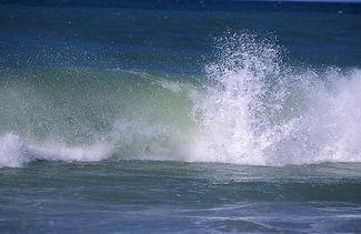 Nantucket wave