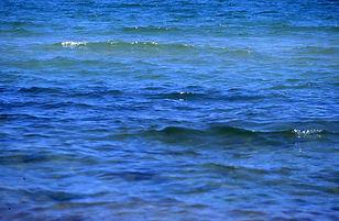 Chappaquoit Beach Blues