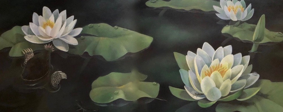 Setting sun, rising moon open water lily blooms.