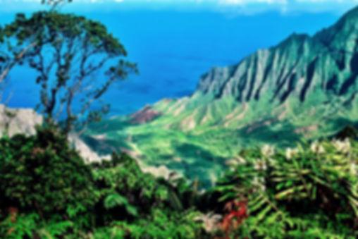 HAWAII BACKGROUND.jpg