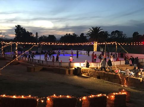 The Holidays On Ice.jpg