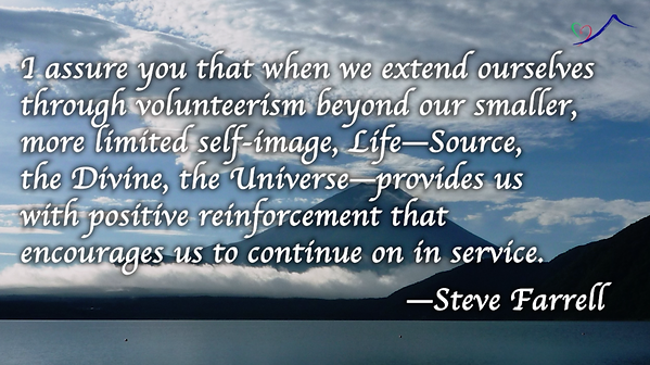 quote steve farrell.png