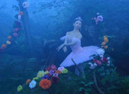 カメラマン羽田哲也のブログ:谷桃子バレエ団「眠れる森の美女」観劇