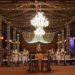 Meant2Be Events Desert Foothills Blue Bird Pictures