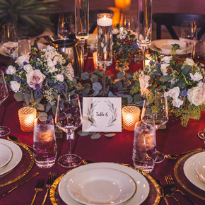 Meant2Be Events Desert Botanical Gardens Aaron Kes Photography
