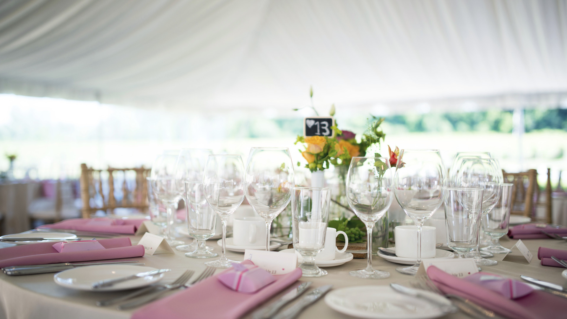 Front Lawn Wedding Tent