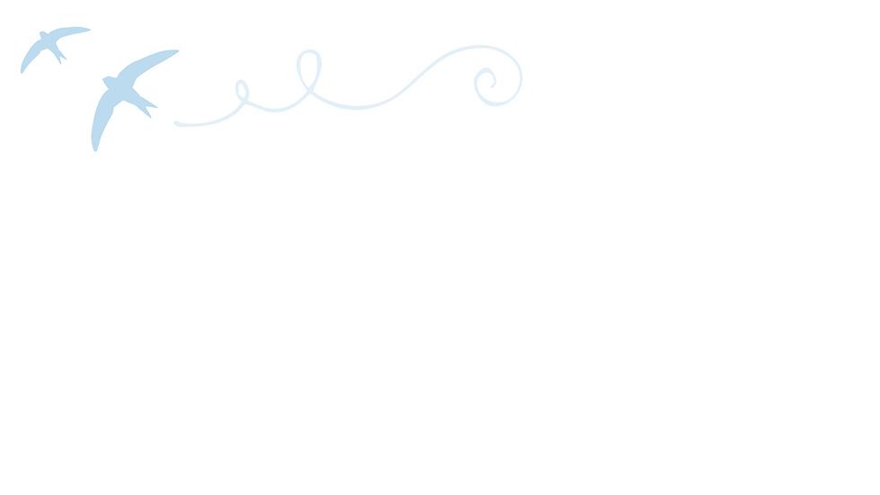 Website Graphics.png