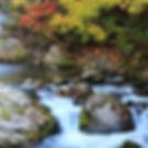 みなかみペンション朝ねぼうのおすすめ紅葉スポット「照葉狭」
