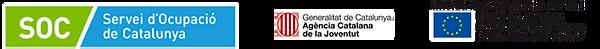 logosweblallera1.png