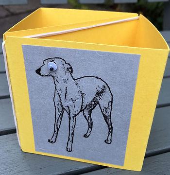 box-card2.jpg