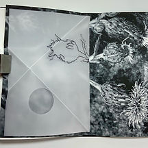 Triangle Trace Book 5.JPG