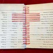Self Interpreting Bible