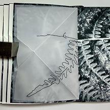 Triangle Trace Book 6.JPG