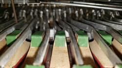 Dallape Super Maestro Restoration by Accordions by De Vincenzo, Miami, FL20210208_155756_resized