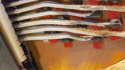 Dallape Super Maestro Restoration by Accordions by De Vincenzo, Miami, FL