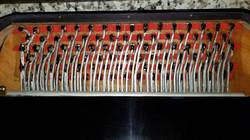 Dallape Super Maestro Restoration by Accordions by De Vincenzo, Miami, FL503_resized