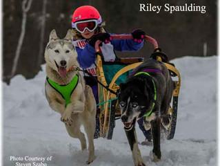 3 Bear Sled Dog Races - Land O' Lakes