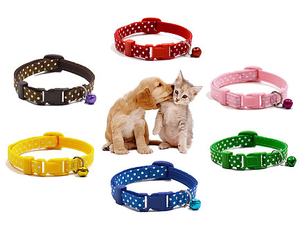 Halsband für Kitten & Welpen 20-29cm 'Hello, Sweetheart!' / versch. Farben