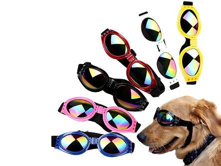 Schutzbrille bei Sonne & Wind 'Cool Trip in the Sun' / verschiedeneFarben
