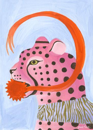 Cheetah's Star