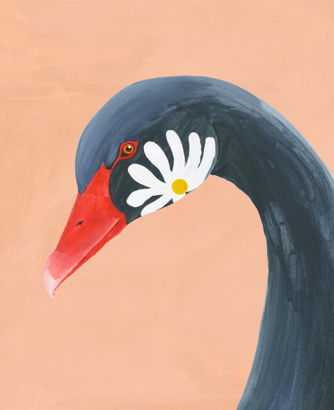 Cisne negro.jpg