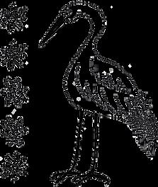 Heron2.png