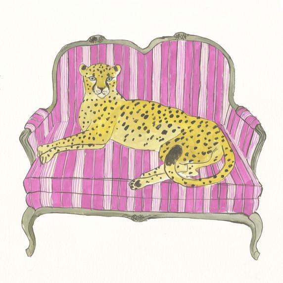 Guepardo en sofa