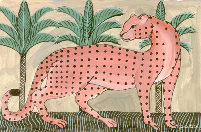 guepardo rosa