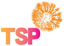 TSP_orange_300x220.jpg