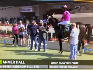 ANMER HALL shows determination to win first time out at Del Mar!