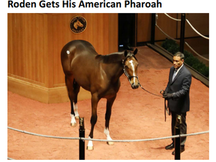 Exciting American Pharoah Colt