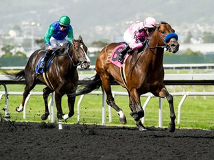 ANYPORTINASTORM wins the Lost in the Fog Stakes at Golden Gate.